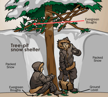 Tree-pit snow shelter