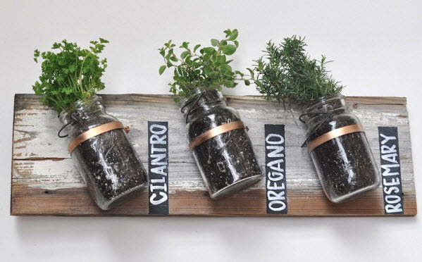 Basic Mason Jar Herb Garden