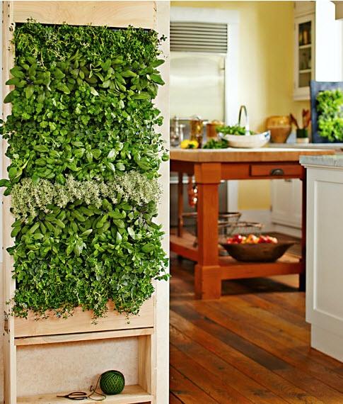 Kitchen Herb Gardens That Will Make Cooking Wonderful: Indoor Garden And Herb Solutions