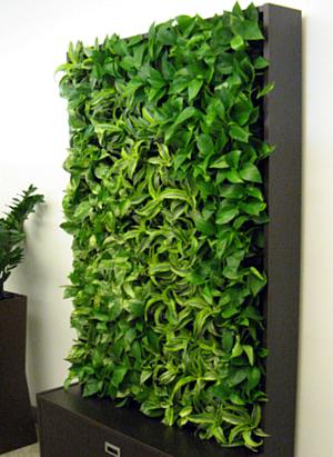 smart wall cabinet