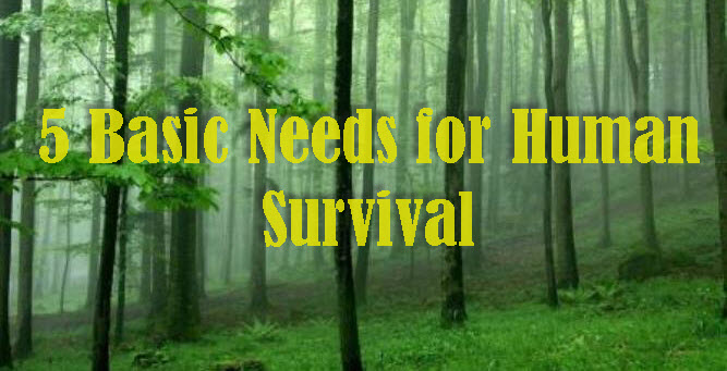 5 basic needs for human survival