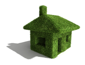 Green Building Grass Home