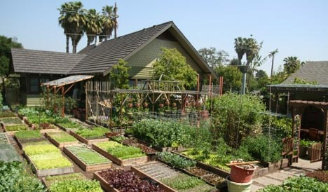 Beautiful Homestead with gardens