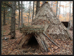 Primitive Survival Shelter